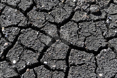 Cracked Dirt. stock photo, Cracked black dirt will make for cool background. by WScott
