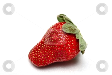 Strawberry stock photo, A single red strawberry on a white background by Karma Shuford