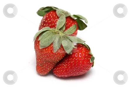 Strawberry trio stock photo, A trio of strawberries on a white background by Karma Shuford