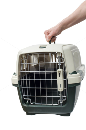 One hand holding a pet carrier stock photo, one hand holding a pet carrier isolated on white background  by ambrophoto