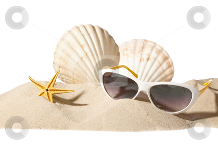 Shell on beach stock photo, shell and sunglasses on beach, isolated on a white background,with a lot of copy-space by twixx