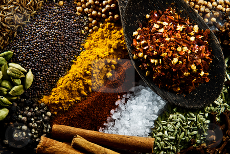 Spices stock photo, Cumin, Paprika, Cardamon, Cinnamon, Mustard Seed, Corriander Seed, Tumeric, Salt, Pepper, Fennel, Cloves and Chilli. by thisboy