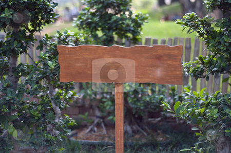 Wooden Board stock photo, A wooden board on a local park with space for text by Arvind Balaraman