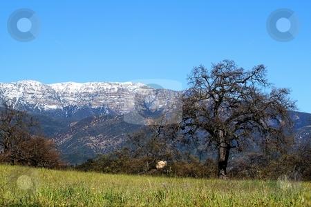 Topa Topa stock photo, panorama of Topa Topa Mountains in Ojai  by Henrik Lehnerer