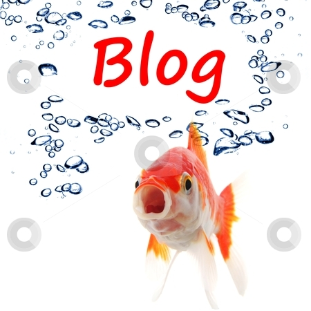 Blog stock photo, blog blogger or internet blogging concept with goldfish by Gunnar Pippel