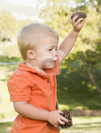 Cute Young Baby Boy with Pine Cones in the Park stock photo, Cute Young Baby Boy Portrait Holding Pine Cones in The Park. by Andy Dean