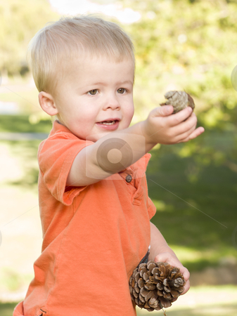 Cute Young Boy with Pine Cones in the Park stock photo, Cute Young Boy Portrait Holding Pine Cones in The Park. by Andy Dean