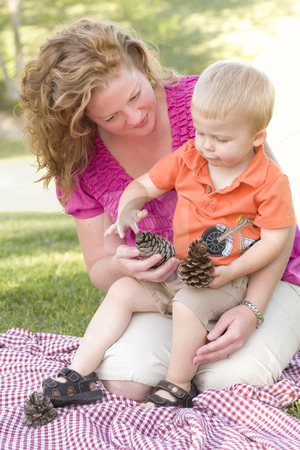 Mother and Son Talk about Pine Cones in Park stock photo, Attractive Mother and Adorable Son Talk about Pine Cones in The Park. by Andy Dean