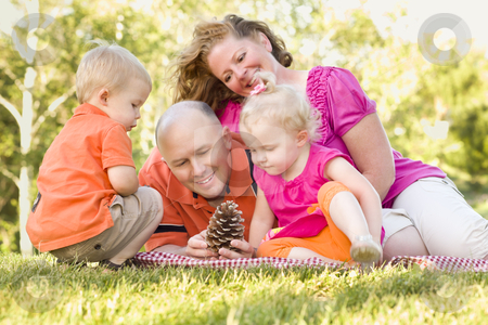 Young Family Enjoying The Park Together stock photo, Young Caucasian Family Enjoying Pinecones at The Park Together. by Andy Dean