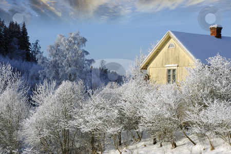 Small cottage in mid winter stock photo, small yellow cottage surrounded by snow and ice, winter scenery from sweden by lagereek