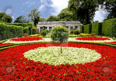 [Image: cutcaster-photo-801039510-Begonia-Garden.jpg]