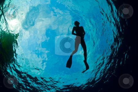 Silhouette of an attractive female snorkeler stock photo, A young woman snorkeling in The Caribbean by mojojojo