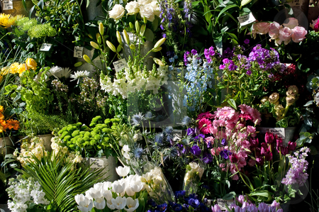 Florist arrangement stock photo, A colourful arrangement of flowers for sale outside a florist shop by Samantha Craddock