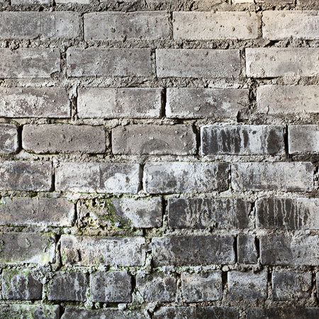 Brick old grunge mouldy wall background stock photo, Brick old grunge moldy wall square background by Alexey Romanov