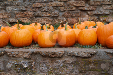 Pumpkins stone wall stock photo, Several rows of orange pumpkins on a ledge with stone wall background by bobkeenan