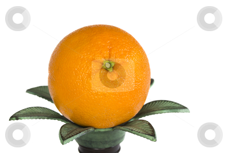 Orange stock photo, A single ripe orange sittng on a candle holder a white background by derejeb
