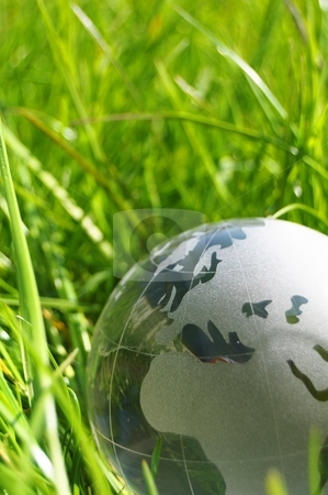 Glass globe or earth in grass stock photo, glass globe or earth in green grass showing eco concept with copyspace by Gunnar Pippel