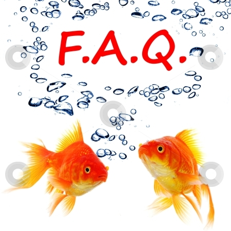 Faq stock photo, faq or frequently asked questions concept with goldfish by Gunnar Pippel