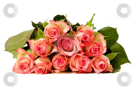 Bouquet of roses stock photo, Bouquet of rose flowers isolated on white background by Lars Christensen
