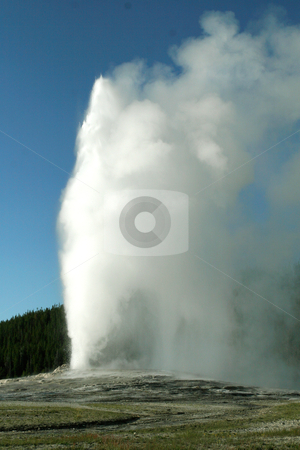 Old Faithful stock photo, Old Faithful geyser erupting in Yellowstone National Park in Wyoming by April Robinson