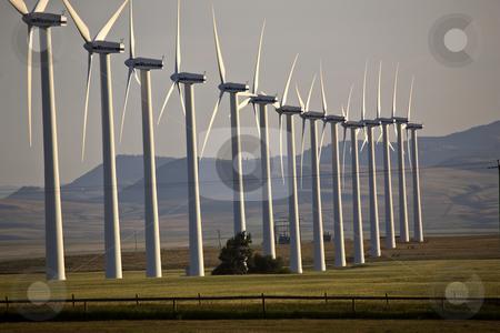 Windfarm near Pincher Creek Alberta stock photo, Windfarm near Pincher Creek Alberta by Mark Duffy