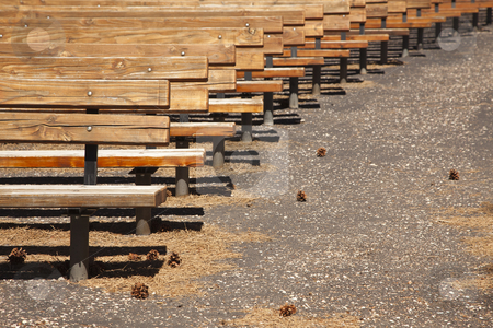 Outdoor Wooden Amphitheater Seating Abstract stock photo, Outdoor Wooden Amphitheater Seating and Pine Cones and Pine Needles Abstract. by Andy Dean