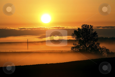 Ground mist just after sunrise in Saskatchewan stock photo, Ground mist just after sunrise in Saskatchewan by Mark Duffy