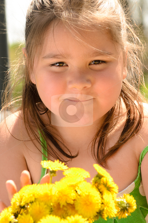 Dandelion Bouquet Girl stock photo, A young girl is holding a bouquet of dandelions. by Richard Nelson