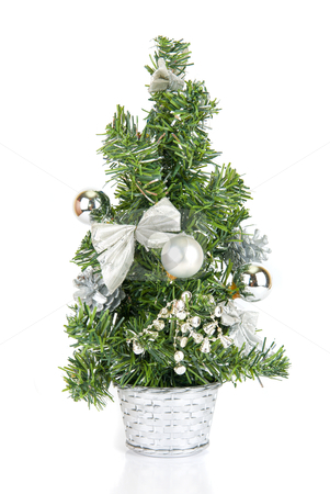 Christmas firtree stock photo, Christmas firtree isolated on a white background by olinchuk