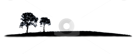 Tree silhouette - Photo Object stock photo, Tree silhouette on hillside, includes clipping path by Bryan Mullennix