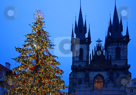 Christmas tree in Prague - orizontal stock photo, Christmas tree in Prague, in front of the Tyn Church by Perseomedusa