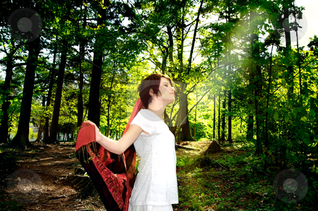 Girl basking in golden sunbeam stock photo, girl in white summer dress basking in golden sunbeam glow  through leaves of shady trees in the forest park by JOSEPH S.L. TAN MATT