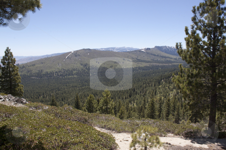 Forest Mountain Range stock photo, A heavily forest range in the sierra nevadaas. by Jeremy Baumann
