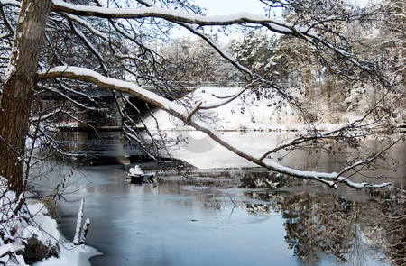 Nice view snow-bound forests and river stock photo, Nice view snow-bound forests and river by Tatjana Keisa