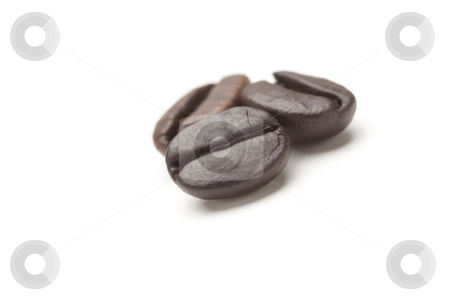 Three Roasted Coffee Beans on White stock photo, Three Roasted Coffee Beans Isolated on White with Narrow Depth of Field. by Andy Dean