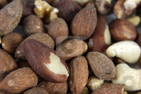 Nut Mixture stock photo, A close-up of mixed nuts, featuring walnuts, almonds, hazelnuts, and brazil nuts.  by Chris Hill