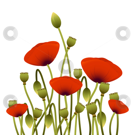 Floral background stock photo, Background with red poppy flowers for your design by Vadym Nechyporenko