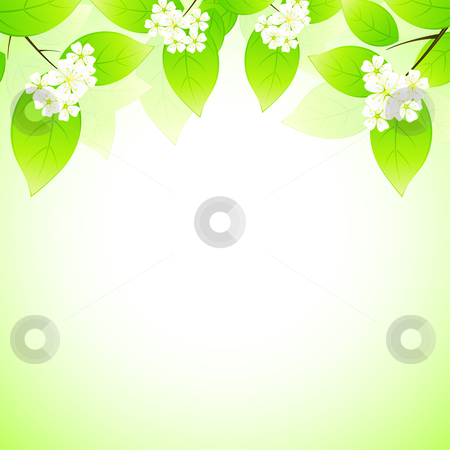 Spring background stock photo, Spring background with flowers for your design by Vadym Nechyporenko