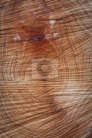 Wood stock photo, wood background by trgowanlock