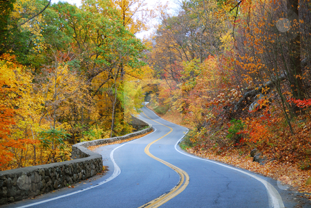 Colorful winding Autumn road  stock photo, Winding road in Autumn woods with colorful foliage tree in rural area. by rabbit75_cut