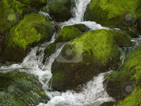 Water stock photo, Water by auriochucha