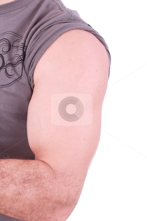 The male arm isolated on white background.  stock photo, The male arm isolated on white background.  by dacasdo