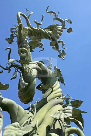 Beanstalk stock photo, A beanstalk growing up into the blue sky by Lucy Clark