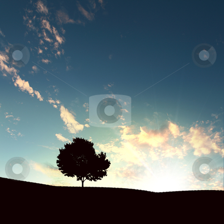 Lonely tree and sunset stock photo, lonely tree on the sunset agaisnt sky background by Sergey Nivens