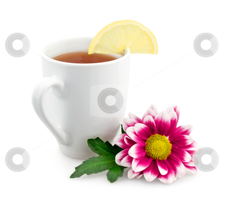 Hot tea with lemon and flower stock photo, Hot tea with lemon and flower isolated on white background by seralex