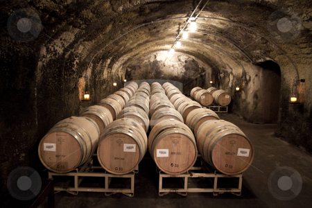 Cave Cellar stock photo, Barrels of wine located in a cave cellar by Kevin Tietz