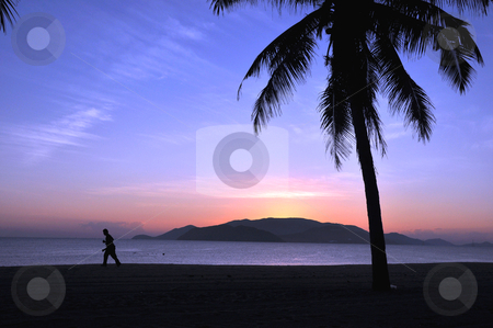 Sunrise on beach stock photo, Landscape of palm tree and island silhouette on beach at sunrise by John Young