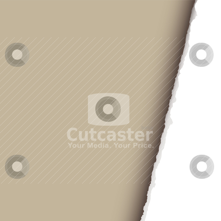 Angle page rip stock vector clipart, Page rip background with torn edge and room for your text by Michael Travers