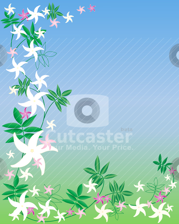 Jasmine Flower Picture on Jasmine Flowers Stock Vector Clipart  Vector Illustration Of Pink And