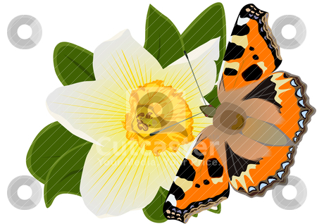 Butterfly on a flower stock vector clipart, Illustration of a spring theme. A butterfly sitting on flower by Sergey Skryl